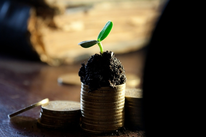 Growing investment: do you have one?